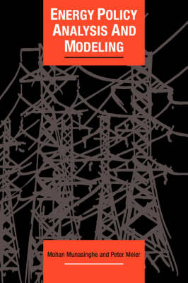 Energy Policy Analysis and Modelling - Cambridge Energy and Environment Series (Hardback)