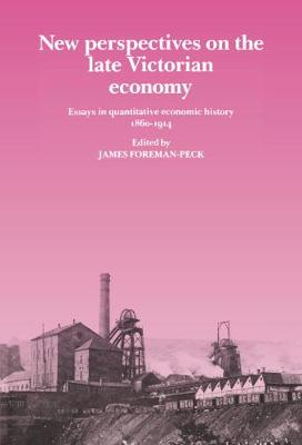 New Perspectives on the Late Victorian Economy: Essays in Quantitative Economic History, 1860-1914 (Hardback)