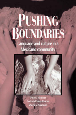 Pushing Boundaries: Language and Culture in a Mexicano Community (Hardback)