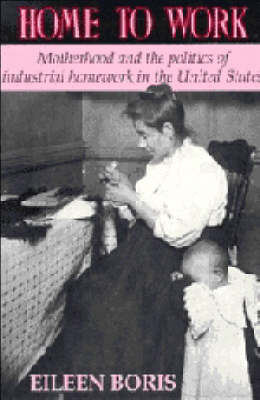 Home to Work: Motherhood and the Politics of Industrial Homework in the United States (Hardback)