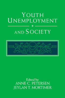 Youth Unemployment and Society (Hardback)