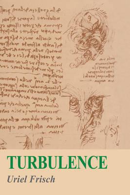 Turbulence: The Legacy of A. N. Kolmogorov (Hardback)