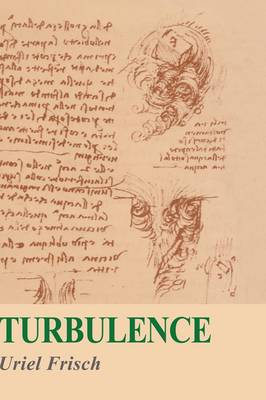 Turbulence: The Legacy of A. N. Kolmogorov (Paperback)