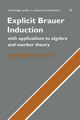 Explicit Brauer Induction: With Applications to Algebra and Number Theory - Cambridge Studies in Advanced Mathematics 40 (Hardback)