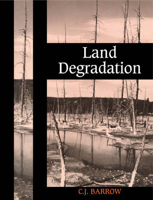 Land Degradation: Development and Breakdown of Terrestrial Environments (Paperback)