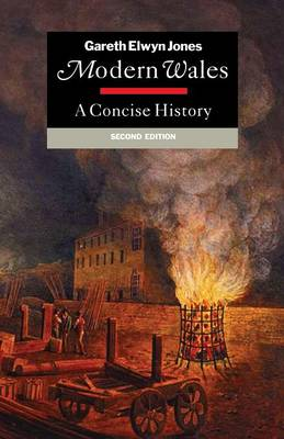 Modern Wales: A Concise History (Paperback)