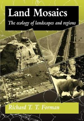 Land Mosaics: The Ecology of Landscapes and Regions (Paperback)