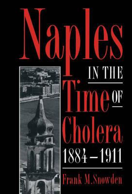Naples in the Time of Cholera, 1884-1911 (Hardback)