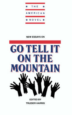 New Essays on Go Tell It on the Mountain - The American Novel (Hardback)