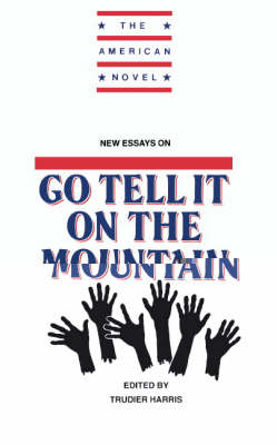 New Essays on Go Tell It on the Mountain - The American Novel (Paperback)