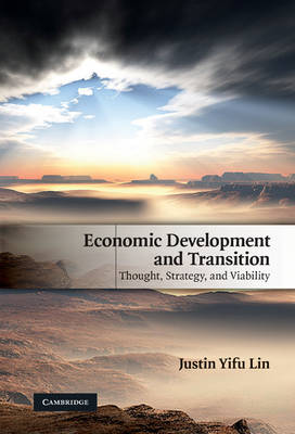 Economic Development and Transition: Thought, Strategy, and Viability (Hardback)