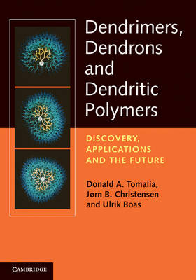 Dendrimers, Dendrons, and Dendritic Polymers: Discovery, Applications, and the Future (Hardback)