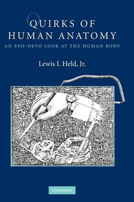 Quirks of Human Anatomy: An Evo-Devo Look at the Human Body (Hardback)