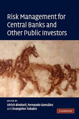 Risk Management for Central Banks and Other Public Investors (Hardback)