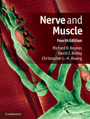 Nerve and Muscle (Hardback)