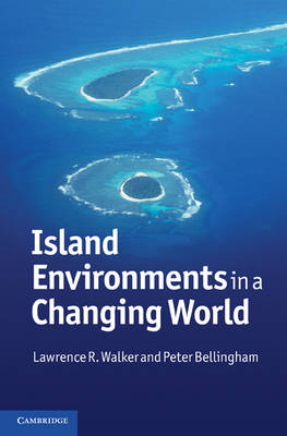 Island Environments in a Changing World (Hardback)