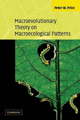 Macroevolutionary Theory on Macroecological Patterns (Paperback)