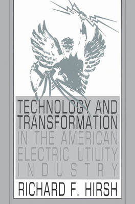 Technology and Transformation in the American Electric Utility Industry (Paperback)