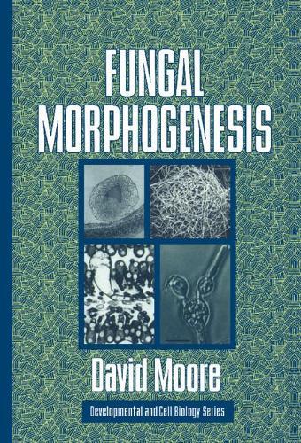 Fungal Morphogenesis - Developmental and Cell Biology Series 35 (Paperback)