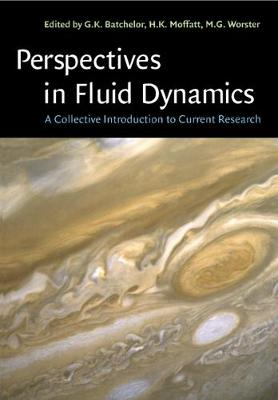 Perspectives in Fluid Dynamics: A Collective Introduction to Current  Research (Paperback)