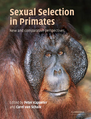 Sexual Selection in Primates: New and Comparative Perspectives (Paperback)