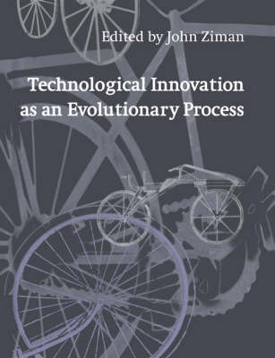 Technological Innovation as an Evolutionary Process (Paperback)