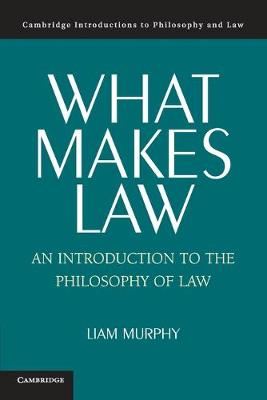 What Makes Law: An Introduction to the Philosophy of Law - Cambridge Introductions to Philosophy and Law (Paperback)