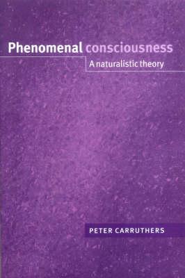 Phenomenal Consciousness: A Naturalistic Theory (Paperback)