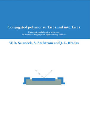 Conjugated Polymer Surfaces and Interfaces: Electronic and Chemical Structure of Interfaces for Polymer Light Emitting Devices (Paperback)