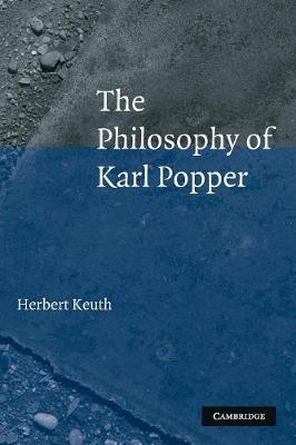 The Philosophy of Karl Popper (Paperback)