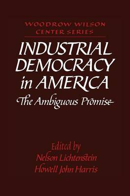 Industrial Democracy in America: The Ambiguous Promise - Woodrow Wilson Center Press (Paperback)
