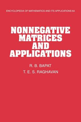 Nonnegative Matrices and Applications - Encyclopedia of Mathematics and Its Applications 64 (Hardback)