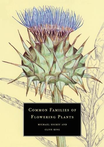 Common Families of Flowering Plants (Paperback)