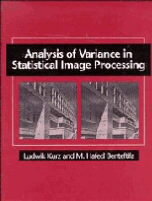 Analysis of Variance in Statistical Image Processing (Hardback)