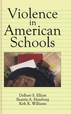 Violence in American Schools: A New Perspective (Hardback)