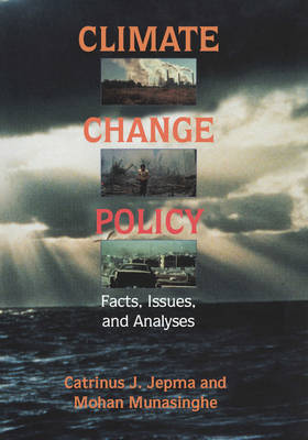 Climate Change Policy: Facts, Issues and Analyses (Paperback)