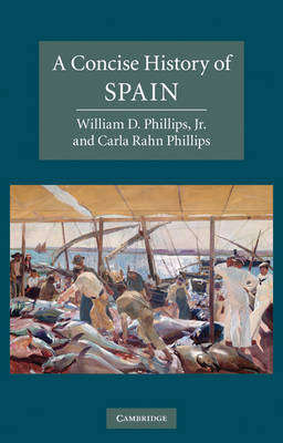 Cambridge Concise Histories: A Concise History of Spain (Paperback)