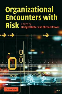 Organizational Encounters with Risk (Paperback)