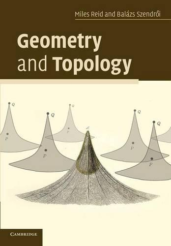 Geometry and Topology (Paperback)