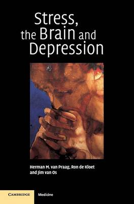 Stress, the Brain and Depression (Hardback)