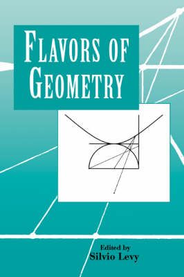 Flavors of Geometry - Mathematical Sciences Research Institute Publications 31 (Paperback)