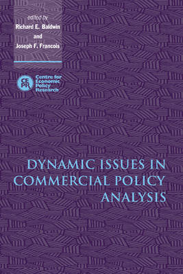 Dynamic Issues in Commercial Policy Analysis (Hardback)