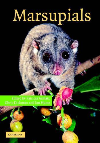 Marsupials (Hardback)