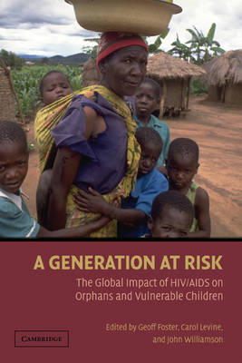 A Generation at Risk: The Global Impact of HIV/AIDS on Orphans and Vulnerable Children (Hardback)