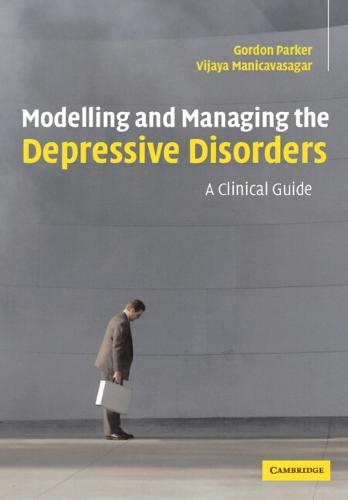 Modelling and Managing the Depressive Disorders: A Clinical Guide (Paperback)