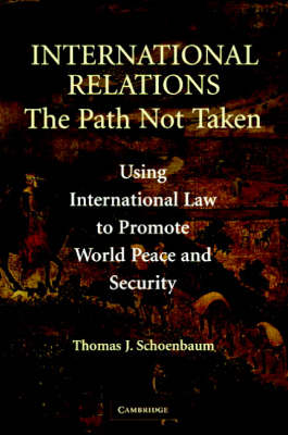 International Relations: The Path Not Taken (Paperback)