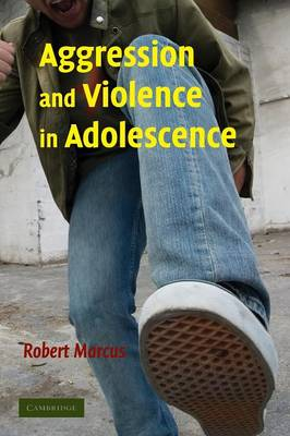 Aggression and Violence in Adolescence (Paperback)