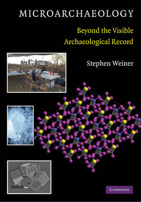 Microarchaeology: Beyond the Visible Archaeological Record (Paperback)