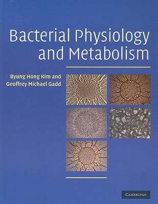 Bacterial Physiology and Metabolism (Paperback)