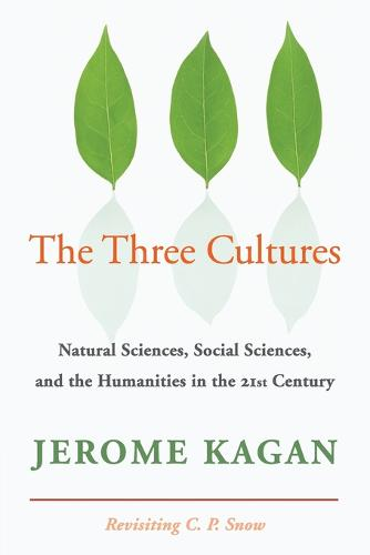 The Three Cultures: Natural Sciences, Social Sciences, and the Humanities in the 21st Century (Paperback)